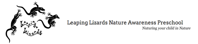 Leaping Lizards Preschool